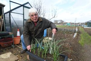 Peterborough Allotment Representatives Consortium chairman Mick Coulson