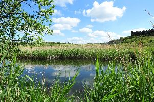 Crown Lakes Nature Reserve at Whittlesey