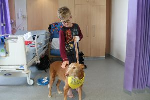 Zorro was a huge hit with patients and staff