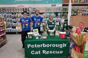 The Pets at Home store in Bourges Boulevard is fundraising for Peterborough Cat Rescue