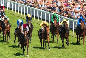 The Qatar Goodwood Festival is days away / Picture by Tommy McMillan