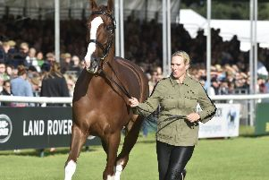 Burghley Horse Trials 2019.  Zara Tindall riding Class Affair EMN-190409-211217009