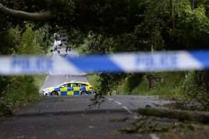 A fallen tree on the Glenavy Road near Lisburn blocks the road causing diversions for drivers as  Storm Hector batters Northern Ireland. Pic Colm Lenaghan/Pacemaker
