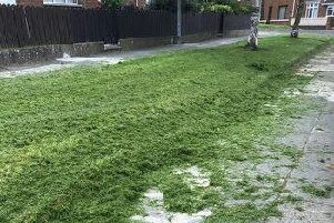 Ballyoran Park woman complains a mess was left after grass cutting