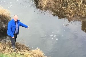 Sinn Fein Cllr Fergal Lennon at the River Closet where there appears to be thousands of dead fish