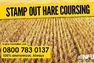 Thames Valley Police have issued a plea for residents to remain vigilant and look out for hare coursers, as fields have begun to be harvested.