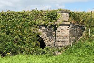 Overgrown but built to last: The railway line at Chapel Bridge was last used 62 years ago