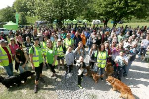 Dog walk in Queen Elizabeth Country Park, Horndean, to raise money for Rowans Hospice.  Picture: Chris Moorhouse