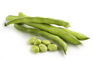 Green-seeded broad beans.