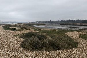 The Warsash area where the search took place.