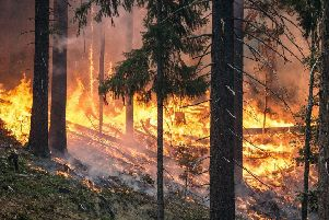 A yellow wildfire warning has been issued