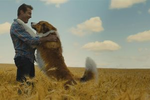Dennis Quaid as Ethan Montgomery in A Dog's Journey.