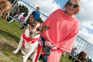 Penny Wagalot placed first in the 'Best Rescue' class, with her owner Hiliary Hayes. Picture: Duncan Shepherd