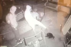 CCTV footage from Southsea Model Village, capturing a thug kicking the venue's cat, Rooney