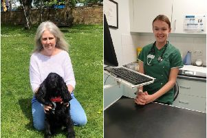 Marmite with his owner Sharon Brown and vet Elly McPhee. Photos supplied.