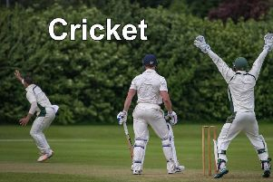 Cricket news.