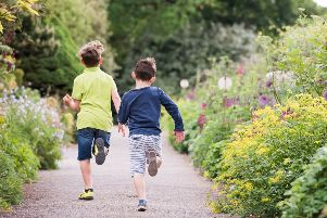 There's plenty of fun for children at Borde Hill this summer