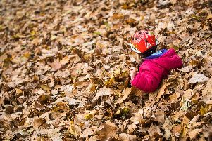 When does autumn start? (Photo credit should read FRANK RUMPENHORST/AFP/Getty Images)