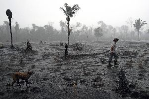 The Amazon Forest has been on fire for weeks. Picture: CARL DE SOUZA/AFP/Getty Images.
