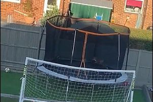 A cheeky fox enjoys a bounce on a trampoline in the back garden of a home in Bury Close Gosport. Picture: Natasha Townsend-Theobold