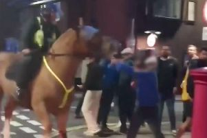 A man was caught on video punching a horse ahead of the Pompey v Saints match at Fratton Park.