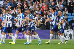 Brighton and Hove Albion enjoyed their victory against Tottenham Hotspur last time out at the Amex Stadium. By Paul Hazlewood