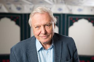 Steve Canavan believes Sir David Attenborough's nature programmes are the best way to learn about the birds and the bees.  Pic: David Parry/PA Wire