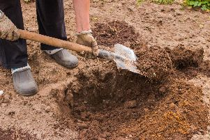 Digging clay soil to make it friendlier. Picture: Shutterstock
