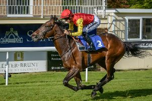 Goodwood Rebel, the syndicate's current two-year-old