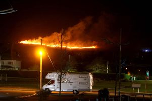 The scene of the blaze near Tollymore Forest Park.  Picture: Picture Steven McAuley/McAuley Multimedia