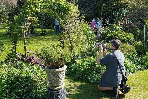 King's Leap, one of the Winchelsea gardens that took part in the National Garden Scheme event April 2019 SUS-190423-095059001