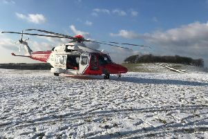 The scene of the tree crash on Chanctonbury Ring, West Sussex