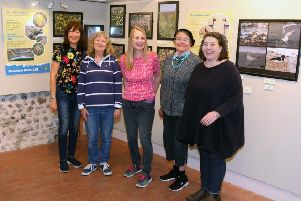 The Friends of Shoreham Beach showcase the Local Nature Reserve in an exhibition at Marlipins Museum, from left, Christine Bohea, Jan Newnham, Lynda Hargreaves and Jacky Woolcock, with curator Emma O'Connor. Photo by Derek Martin DM1942570a