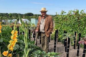 Stephen Nightingale at his allotment in The Rublees, off Newham Lane in Steyning