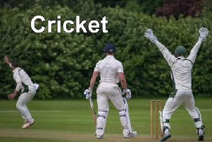 The latest local cricket news.