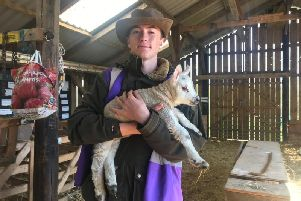 Noah Blevins at the Lambing Open Day at the Askefield Project in Friskney.