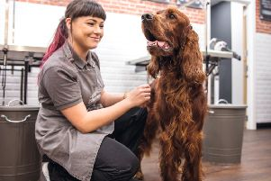 Jasmine, grooming stylist at Jollyes, is looking forward to welcoming new customers to The Spa. ANL-190521-093010001