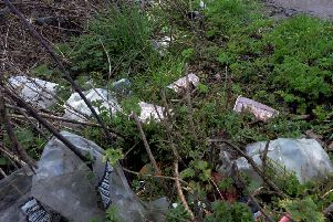 Litter on the side of a road
