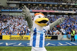Brighton and Hove Albion mascot Gully will be at the special event. Photograph by Paul Hazlewood