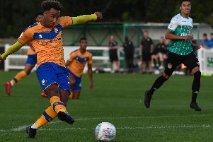 Nicky Maynard  (Photo by George Wood/Getty Images)