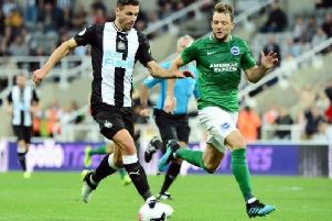 Dale Stephens has played a crucial role in Brighton and Hove Albion's midfield so far this season