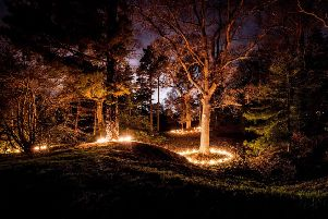 Wakehurst Glow Wild 2015. Picture by Jim Holden
