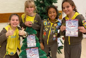 2nd Southwick Brownies and 3rd Southwick Rainbows have won best-dressed Christmas tree two years in a row