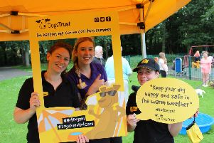 Dogs Trust has joined forces with Councils in Northern Ireland in a bid to prevent dogs dying in hot cars this summer