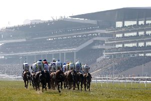 All roads leads to Cheltenham next month