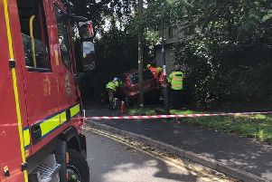 A woman was rescued from a car after hitting a tree in Kenilworth. Photo by Kenilworth Fire Station.