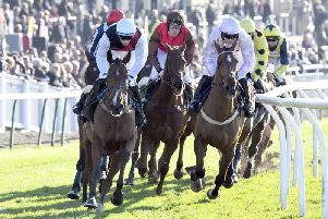 Action at Fontwell is in prospect on Thursday afternoon / Picture by Malcolm Wells