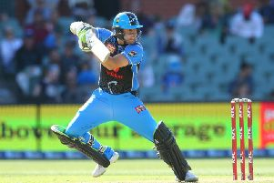 Harry Nielsen in action for the Adelaide Strikers.