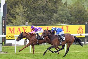 The May Festival brings three days of top-class flat racing to Goodwood / Picture by Malcolm Wells