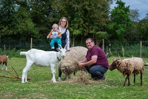 Simon and Kate Morris, and their six-month-old son Henry with Reggie the goat and Freckles the sheep.